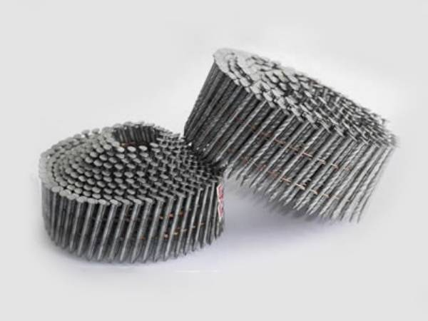Galvanized Steel Coil Nails With Smooth Spiral Or Ring Shanks