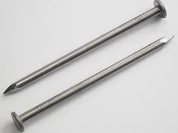 Two galvanized steel common nails